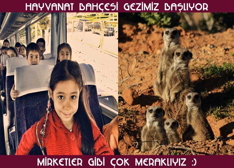 İzmir-Doğal-Yaşam-Parkı