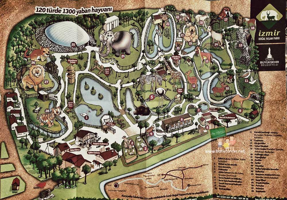 Sasalı Haritası