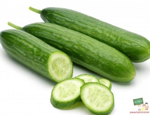 Salatalığın Faydaları ve Bilinmeyen Yönleri