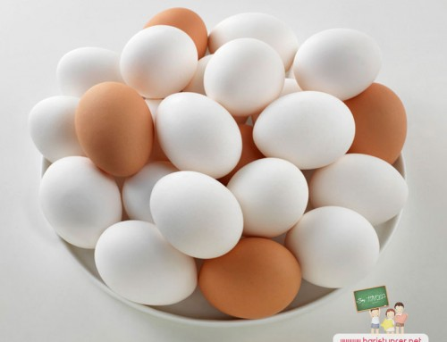 Her Gün Yumurta Yediğimizde Vücudumuzda Ne Tür Değişiklikler Olur ?