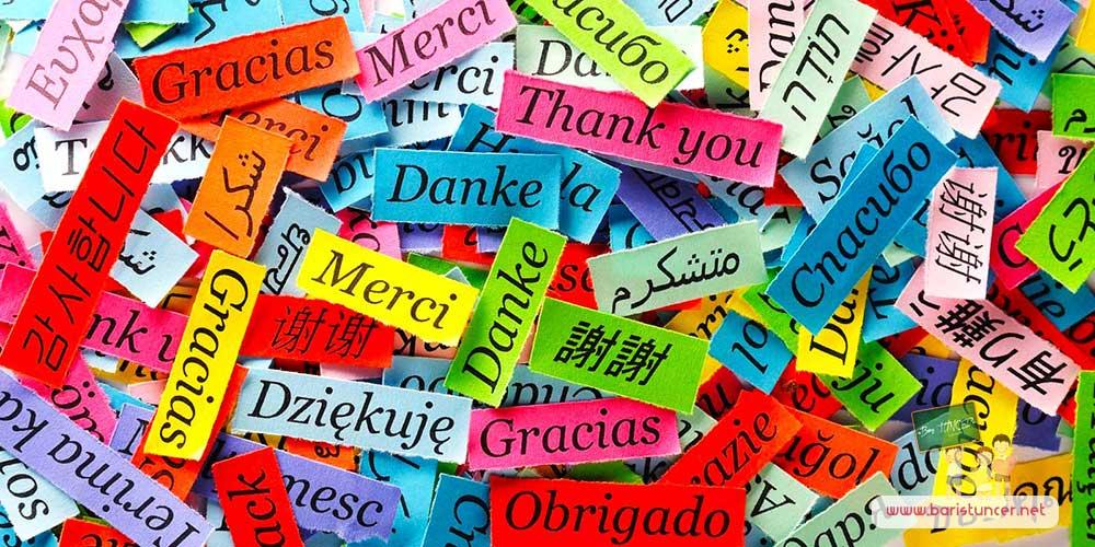 Dünyada En Zor Öğrenilen Dil Hangisidir ?